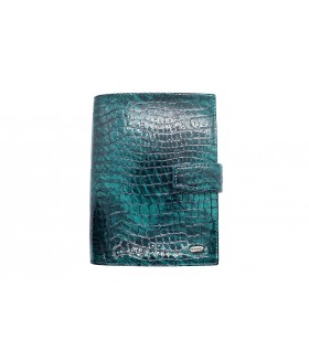 Обложка на автодокументы + паспорт 595.091.09 Green