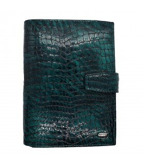 Обложка на автодокументы + паспорт 596.091.09 Green