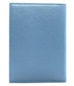 Обложка на автодокументы 584.PGT.118 P.Blue